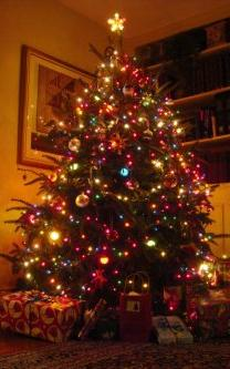 tree0006.jpg