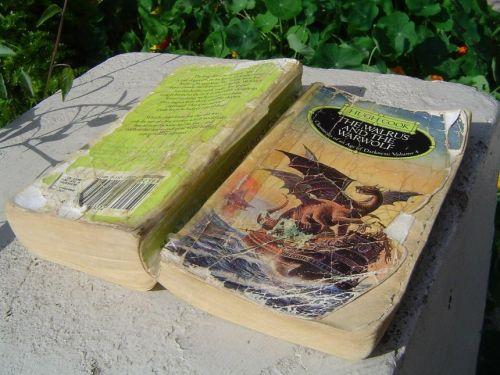 walruswarwolfoldbook
